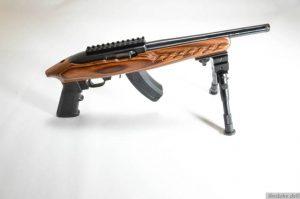 ruger-1022-char-4917