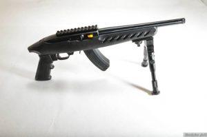 ruger-1022-char-4923